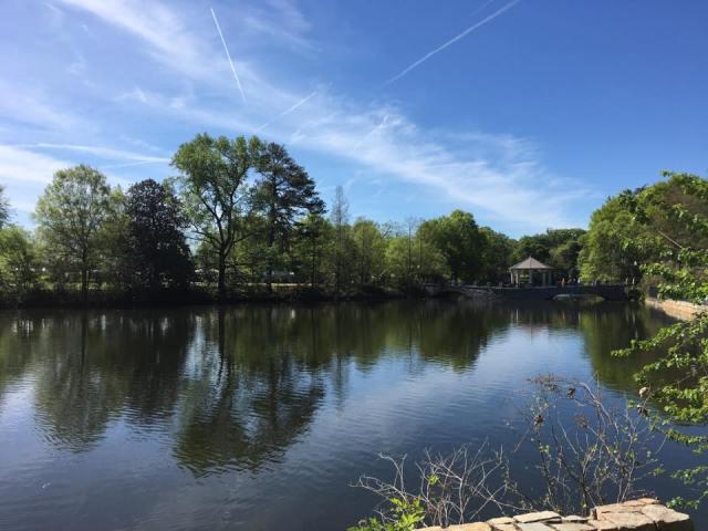 Atlanta Dogwood Festival, Piedmont Park