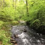 Unicoi to Helen Trail