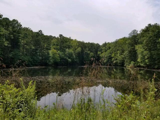 Sibley Pond