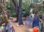 Zoo Atlanta Boo at the Zoo