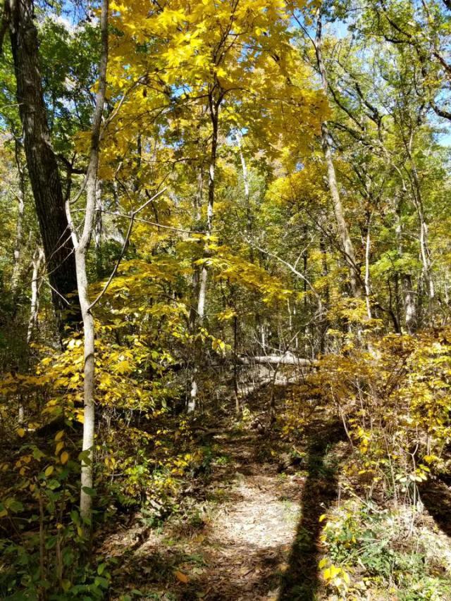Fanning Trail