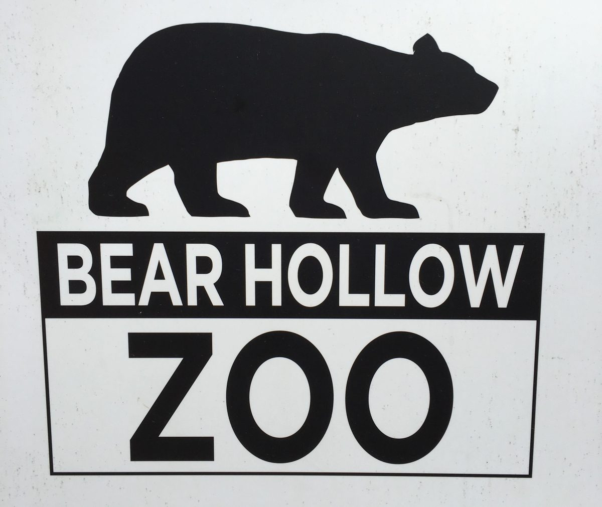 Seeing Georgia's Wildlife at Bear Hollow Zoo