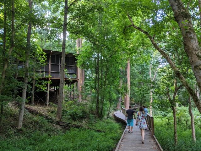 Fernbank Wild Woods