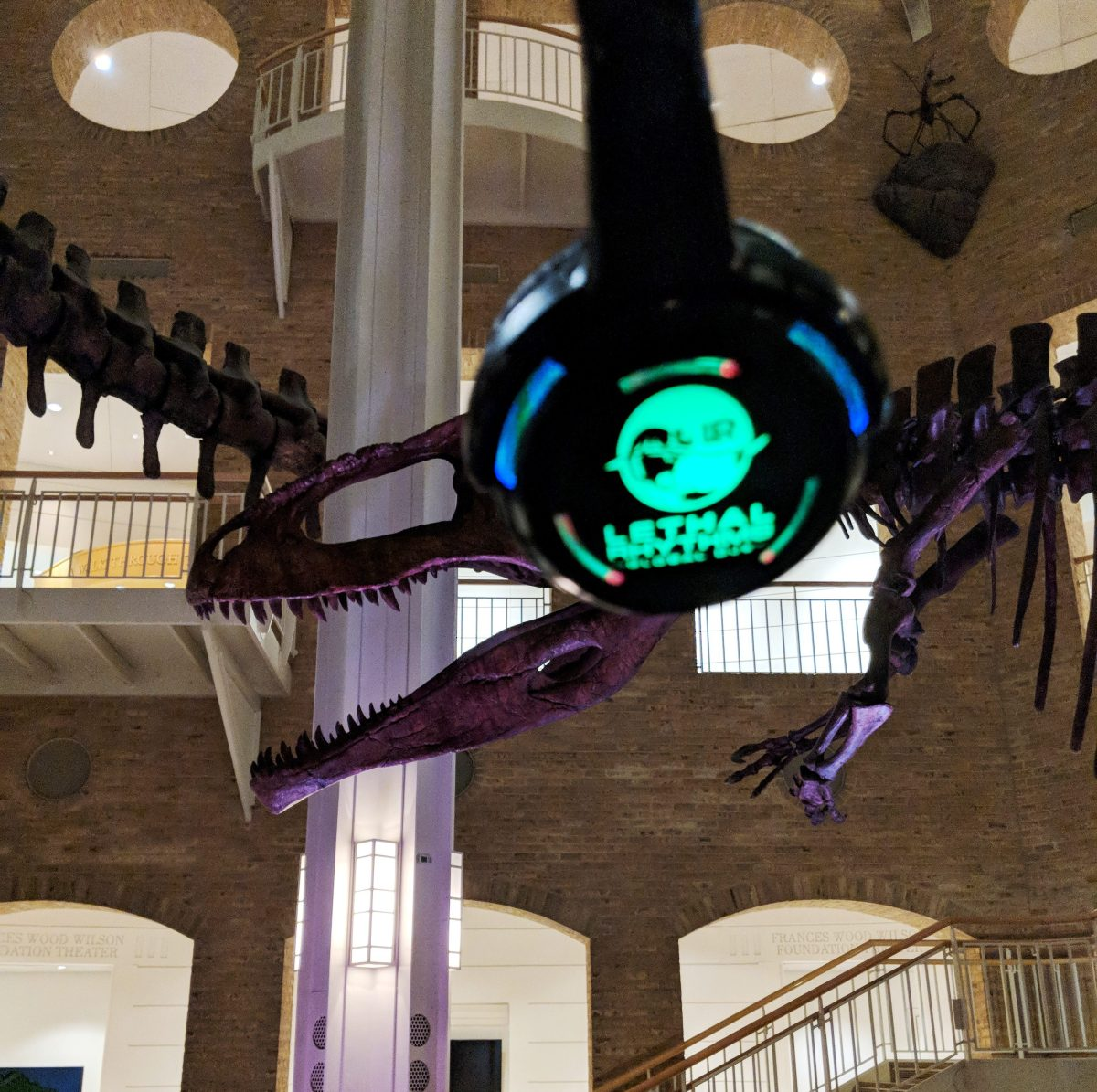 Museum Of Nature And Science Wedding: Fernbank Summer Block Party Review