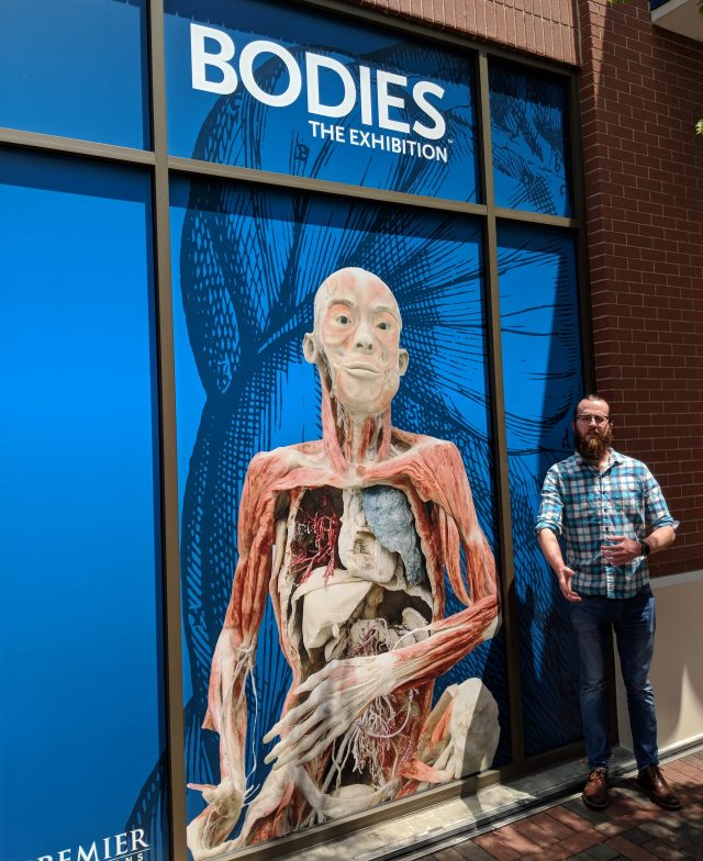 BODIES...The Exhibition