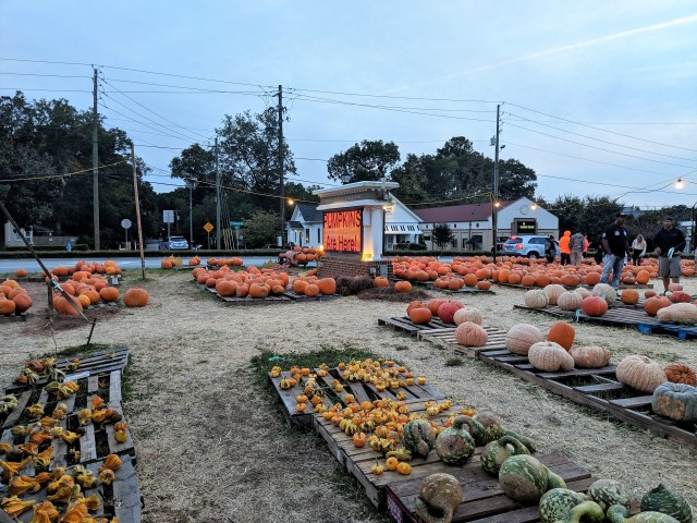 Smyrna Pumpkin Patch