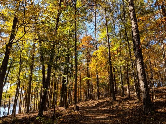 Iron Hill Loop Trail