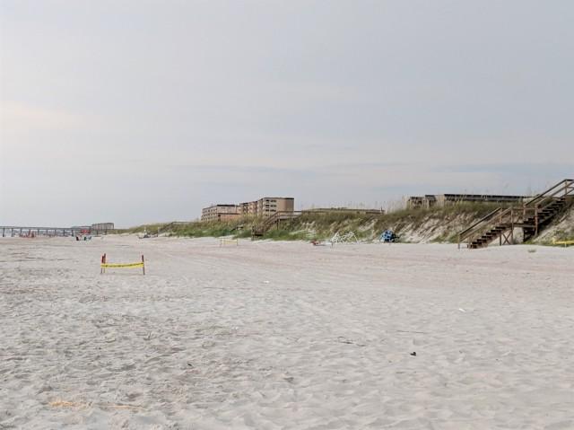 Sea Turtle Nests at Fernandina Beach